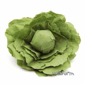 Kaufmannsladenzubehör Salatkopf