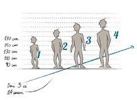 Dorelan Kindermatratze FLIP Linie FORyoung 004