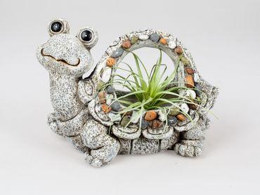 Formano Pflanzgefäß Schildkröte; ca. 40x39cm