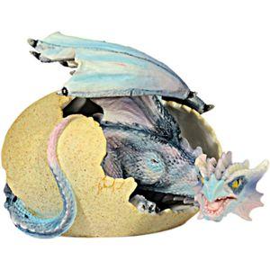Drache aus Ei blau