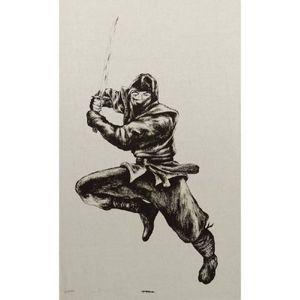 Stofftuch Ninja