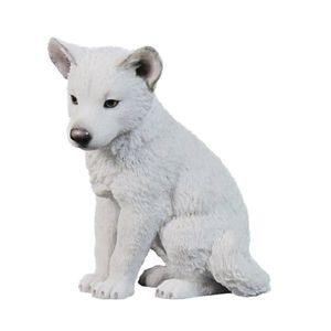 Polarwolf Welpe sitzt und schaut nach unten