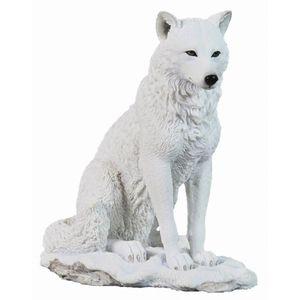 Polarwolf sitzt im Schnee