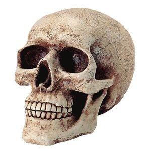 Spardose menschlicher Totenkopf 18cm