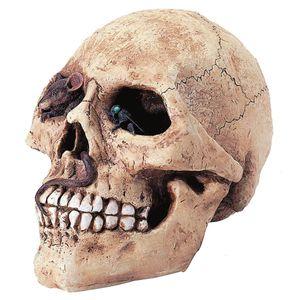 Spardose Totenkopf mit Maus im Auge 18cm