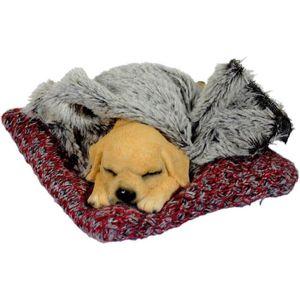 Hund auf Strick Wolldecke mit Kunstfell 15cm