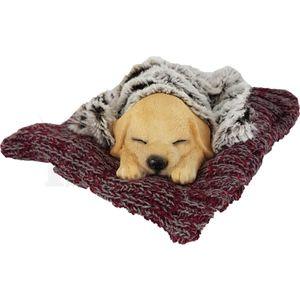 Hund auf Strick Wolldecke mit Kunstfell 15cm – Bild 6
