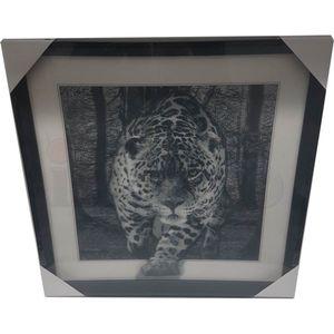 5D Wackelbild - Leopard schwarz-weiß 40x40 Lenticular Optik – Bild 6
