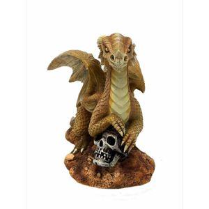Baby Drache Draco Aurum - Desert Dragon by Anne Stokes 13cm – Bild 1