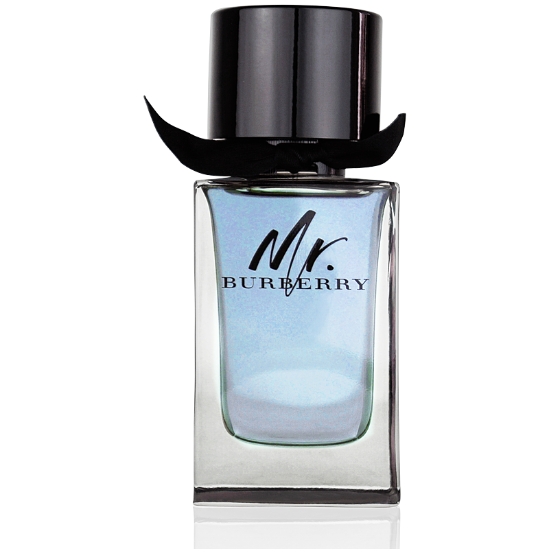 Burberry Mr. Burberry for Men Eau de Toilette 100ml