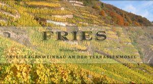 Weißwein Weingut Fries Riesling Winninger Röttgen Spätlese lieblich 2015 ( 1x 0,75 l )    – Bild 4