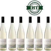 Weißwein Weingut Timo Dienhart Cabernet Blanc Qualitätswein 2017 halbtrocken ( 6 x 0,75 l )   – Bild 1
