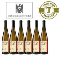 Weißwein Weingut  Lorenz Kunz VDP.GUTSWEIN Riesling 2015 trocken (6x0,75l)   – Bild 1