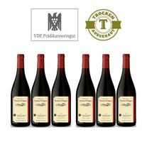 Rotwein Weingut  Lorenz Kunz Spätburgunder 2012 trocken (6x0,75l) - VERSANDKOSTENFREI - – Bild 1
