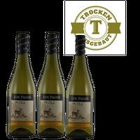 Weißwein Chile Chardonnay Valle Central trocken 2015 (3x0,75l)   – Bild 1