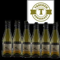Weißwein Chile Chardonnay Valle Central trocken 2015 (6x0,75l)   – Bild 1
