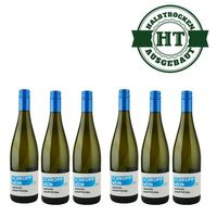 Weißwein | Weingut Martin Schropp | Riesling halbtrocken 2015 (6x1,0l) - VERSANDKOSTENFREI - – Bild 1