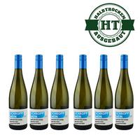 Weingut Martin Schropp | Weißherbst | Spätburgunder halbtrocken 2015 (6 x 1,0l)   – Bild 1