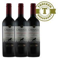 Rotwein Chile Rapel Valley Cabernet Sauvignon 2015 trocken (3x0,75l)