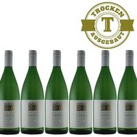 Weißwein Weingut Krieger Pfalz Weißburgunder Rhodter Ordensgut 2016  trocken (6 x 1,0L )   – Bild 1