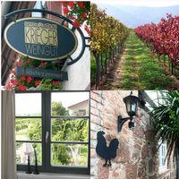 Rotwein Weingut Krieger Pfalz Dornfelder Qualitätswein 2016 halbtrocken (6 x 0,75 l)   – Bild 2