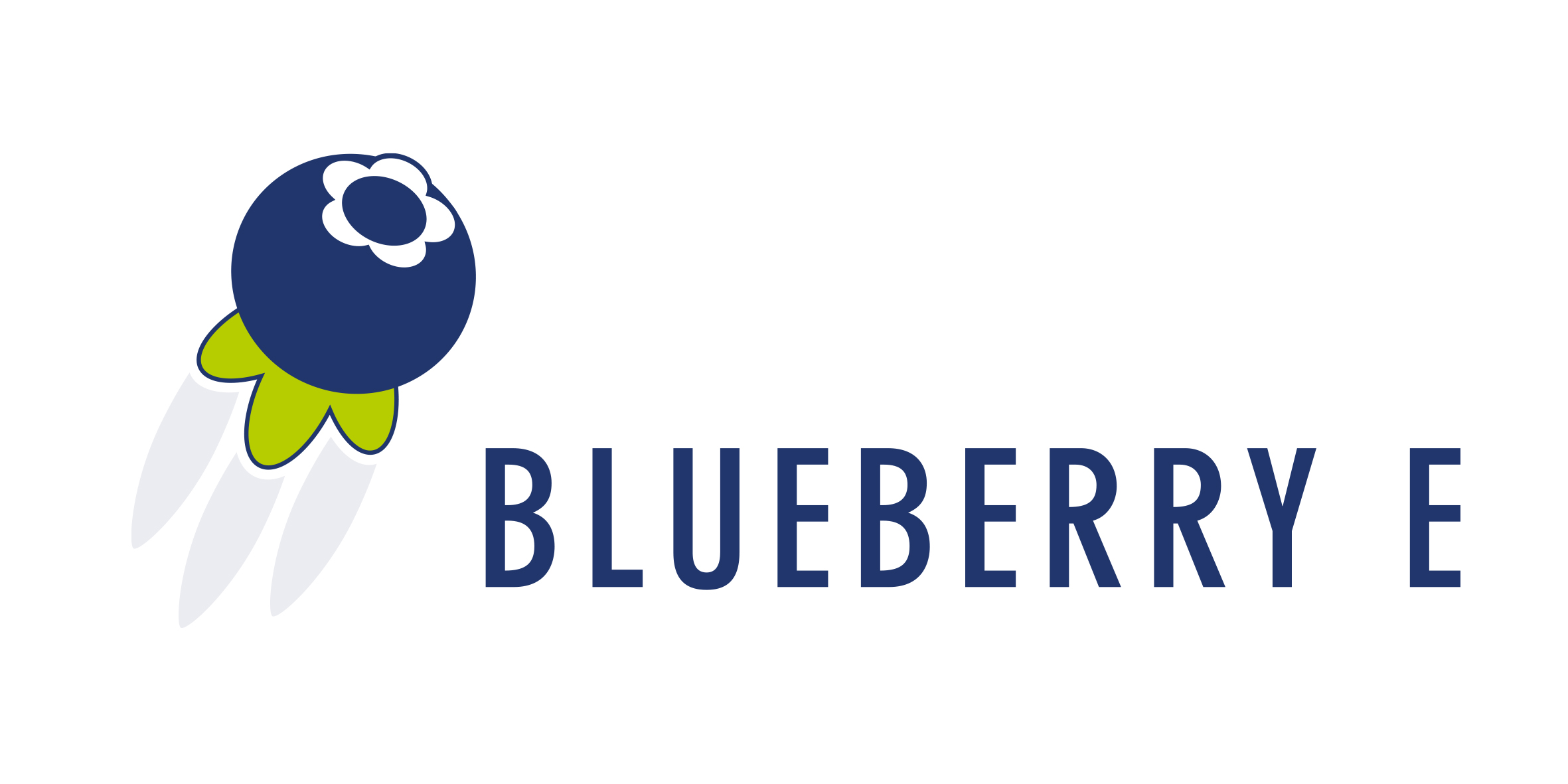 BlueberryE Webshop