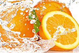 Essen und Trinken Motive von Artland im Onlineshop ARTgalerie Bildershop