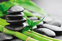 Wellness Motive von Artland im Onlineshop Artgalerie Bildershop
