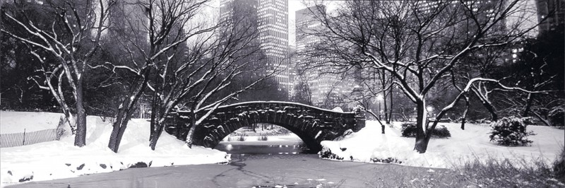 Unknown: Stone Bridge in Central Park - Kunstdruck auf Holzfaserplatte 29 x 89 cm