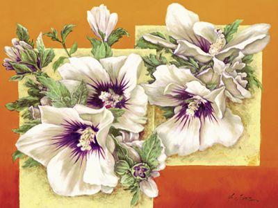 A. Heins: Hibiscus - Original auf Leinwand 70 x 88 cm