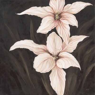 A. S.: Hazel Gladioluses - Original auf Leinwand 70 x 70 cm