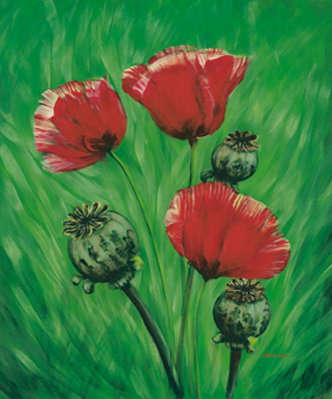 Marie Lou: Mohn - Original auf Leinwand 60 x 50 cm
