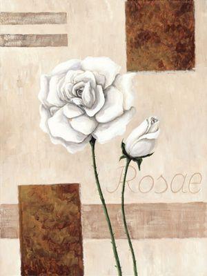 A. S.: Rosae - Rosen - Original auf Leinwand 80 x 60 cm