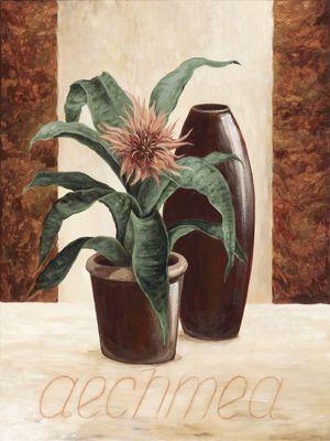 A. S.: Aechmea - Lanzenrosette - Original auf Leinwand 80 x 60 cm