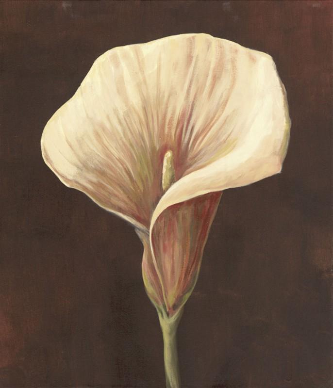 A. S.: Ginger Calla II - Original auf Leinwand 70 x 60 cm