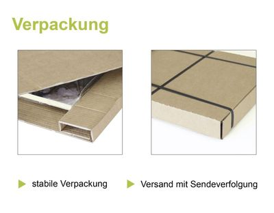 A. Heins: Birkenzweig - Kunstdruck auf Holzfaserplatte 69 x 39 cm