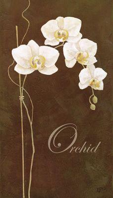 K. Frolova: Delicate Orchid_braun - Kunstdruck auf Holzfaserplatte 69 x 39 cm