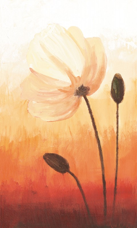 A. S.: Some Poppies II - Original auf Leinwand 50 x 30 cm