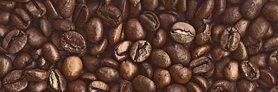 W. L.: Kaffeebohnen - Leinwandbild auf Platte 40 x 120 cm