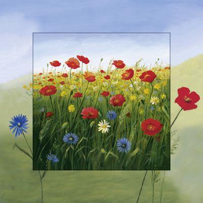 A. S.: Mohnblumen Landschaft I - Bild mit Modellrahmen 50,4 x 50,4 cm