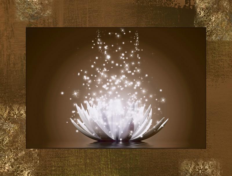 Vadim Georgiev: Magie der Lotus-Blume braun - Bild mit Modellrahmen 59,9 x 80,9 cm