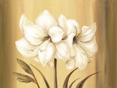 A. S.: Goldene Amaryllis - Original auf Leinwand 60 x 80 cm