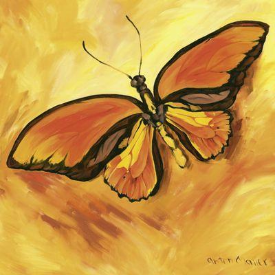 Anton Maller: Schmetterling - Original auf Leinwand 70 x 70 cm
