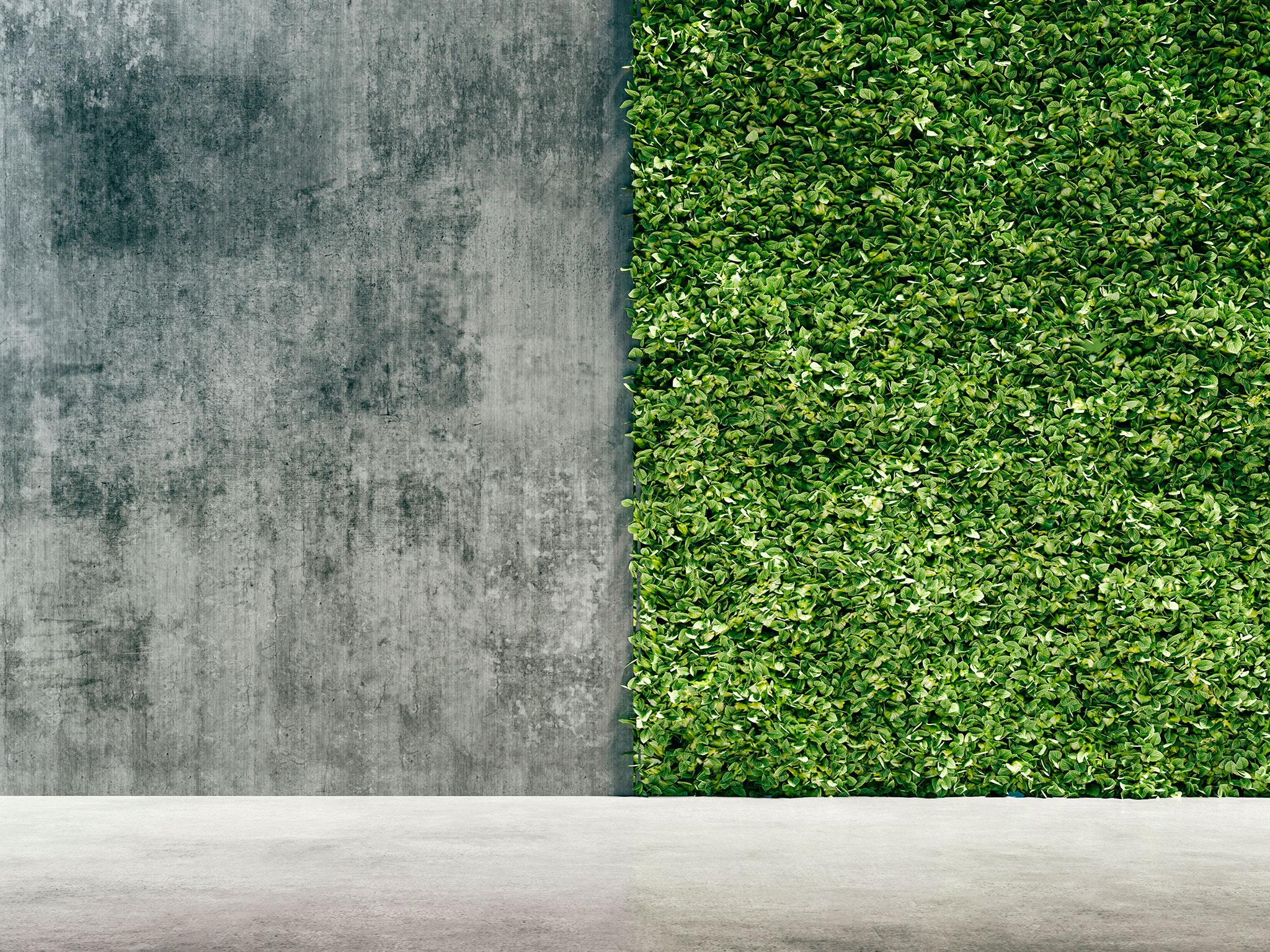 Garten Neu Anlegen Die Ultimative Checkliste Mit Praktischen Tipps