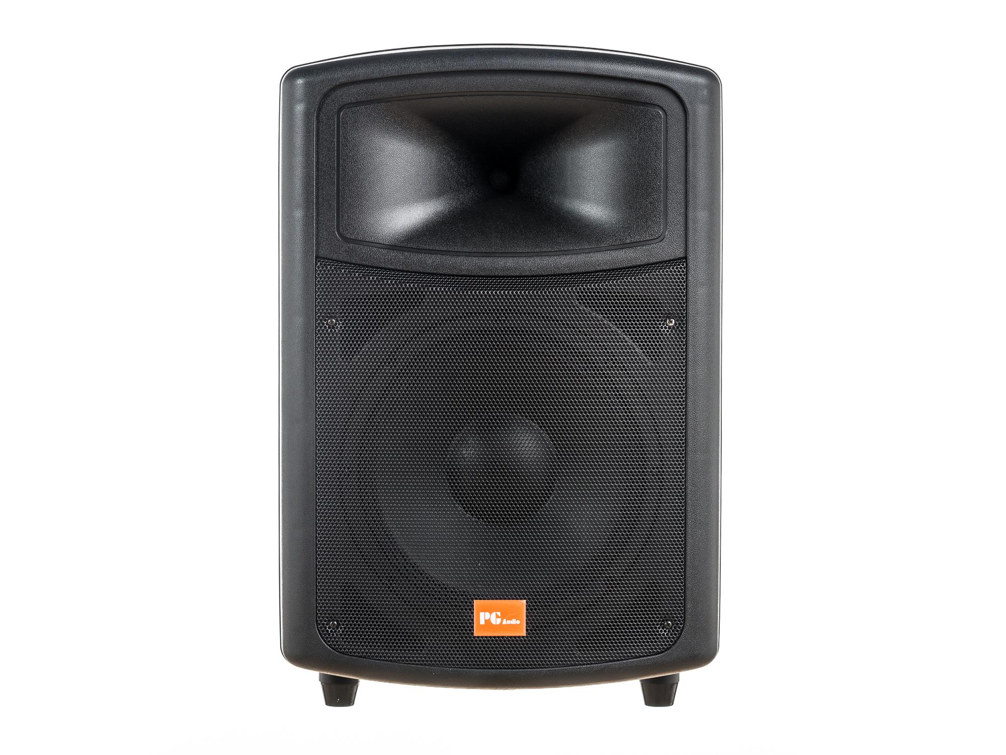 PG Audio PA 120,Disko,Party,Pa Lautsprecher,12 Zoll,1 Stück Neu 001