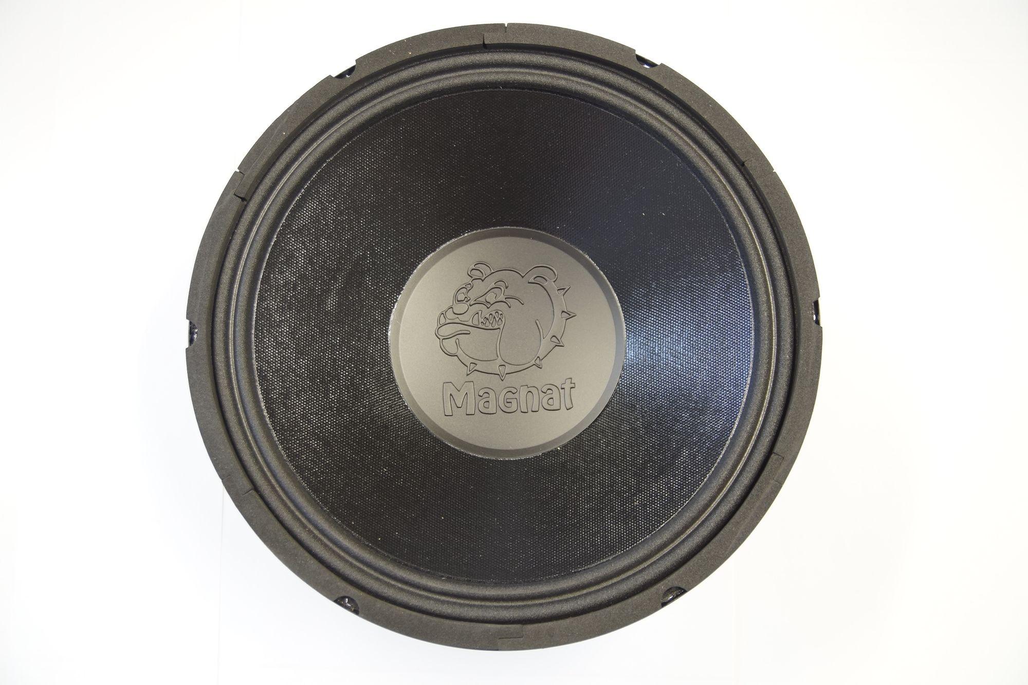 1 Stück 30 cm Subwoofer Magnat MWS 300CP4110 ISO Basslautsprecher Tieftöner  001