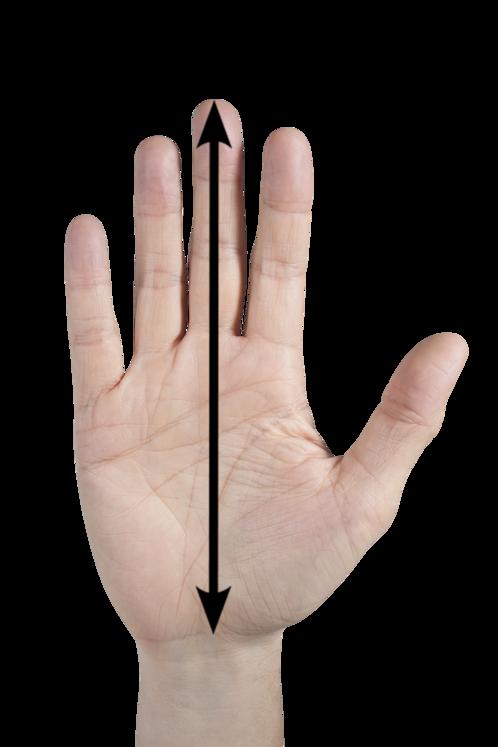 Größe TW-Handschuhe
