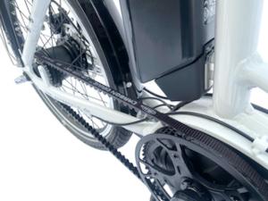 Gates Carbon Riemenantrieb