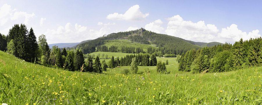 Deko-Panel Parma - Breite: 50cm - Höhe: 35cm - Tiefe: 2cm