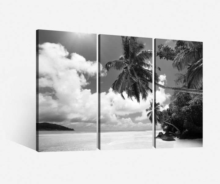 leinwand 3 tlg palmen schwarz wei strand landschaft see meer bilder 9h043 leinwandbilder. Black Bedroom Furniture Sets. Home Design Ideas